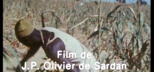 film Sassale